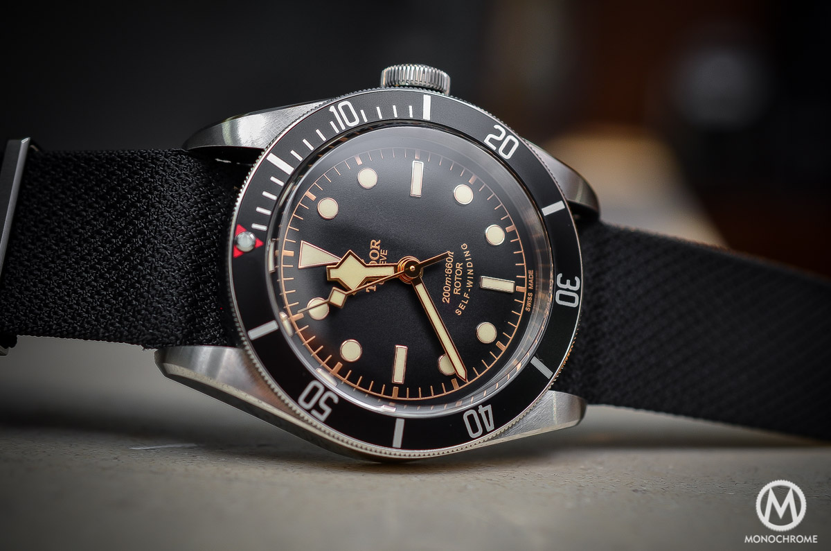 Tudor Black Bay Black Bezel 79220N - case