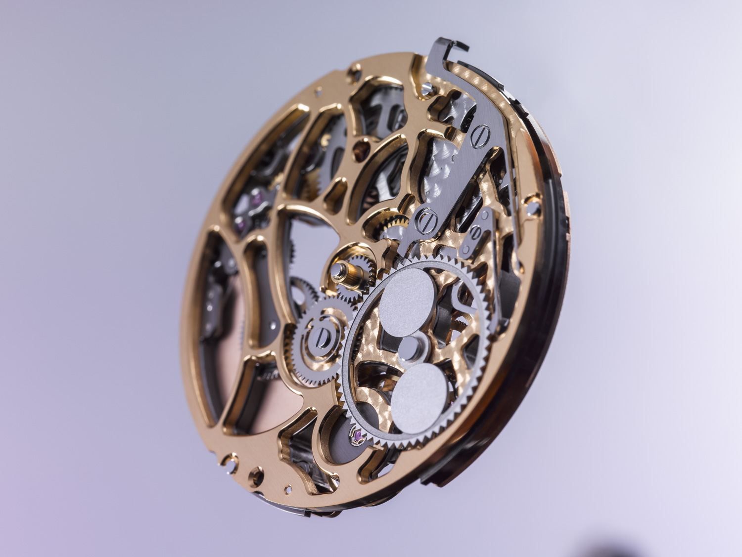 Vaucher Skeleton Openworked movement case study