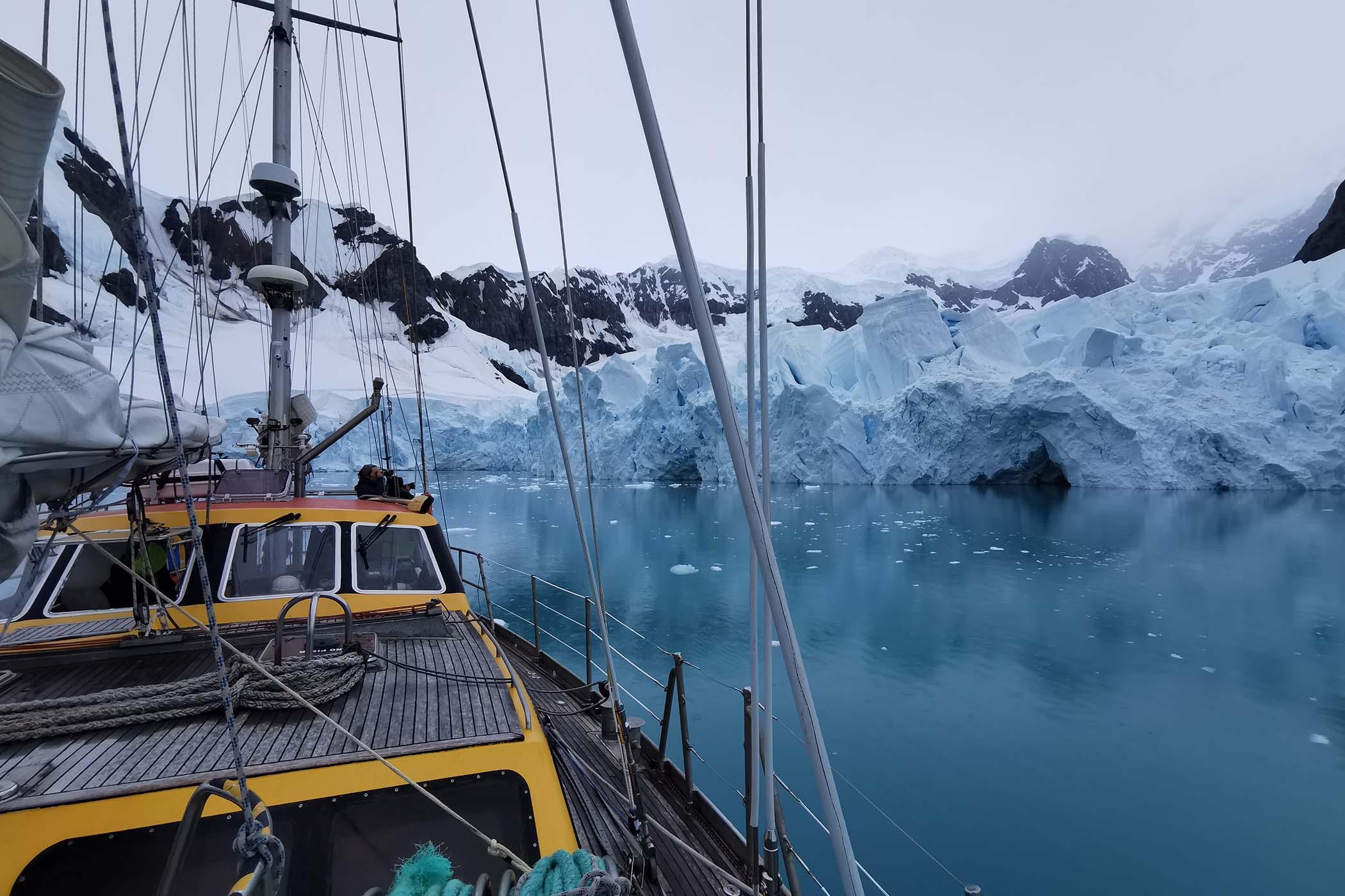 Delma Oceanmaster Antarctica Limited Edition - 10