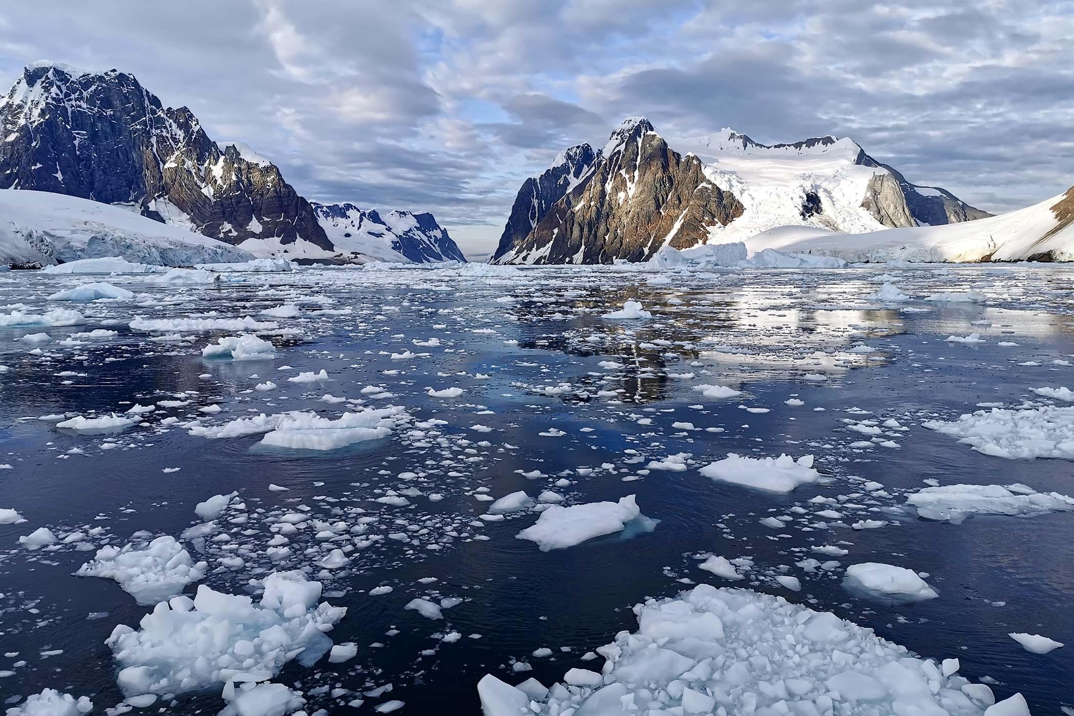 Delma Oceanmaster Antarctica Limited Edition - 8