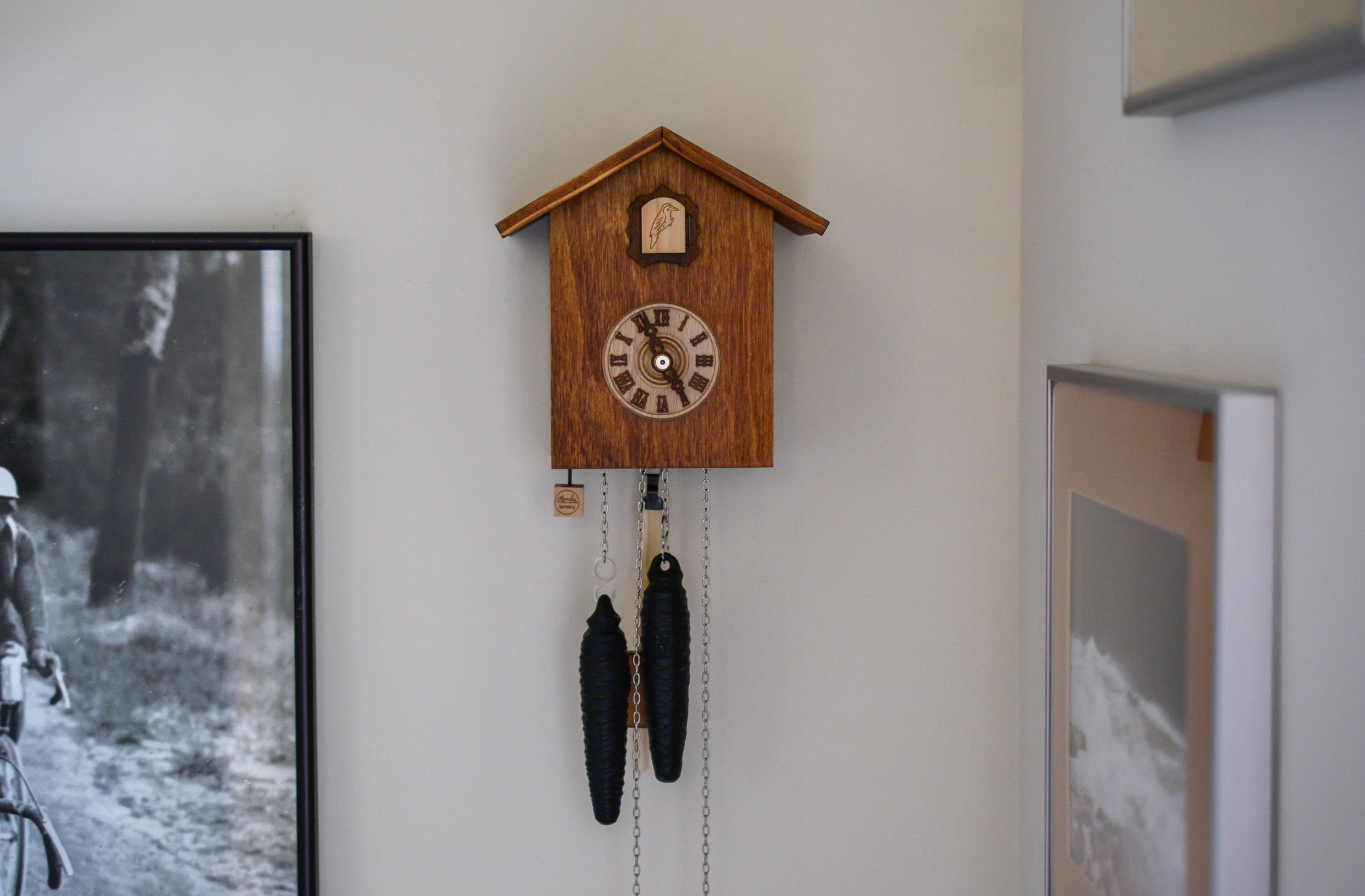 review Cuckoo Clock