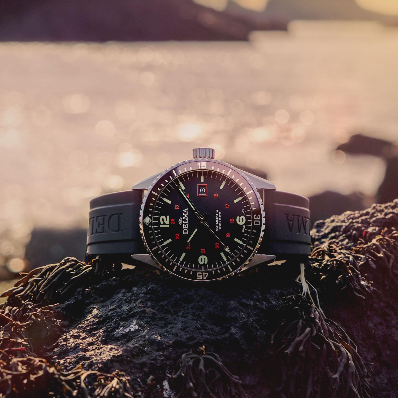 Delma Cayman Field Watch