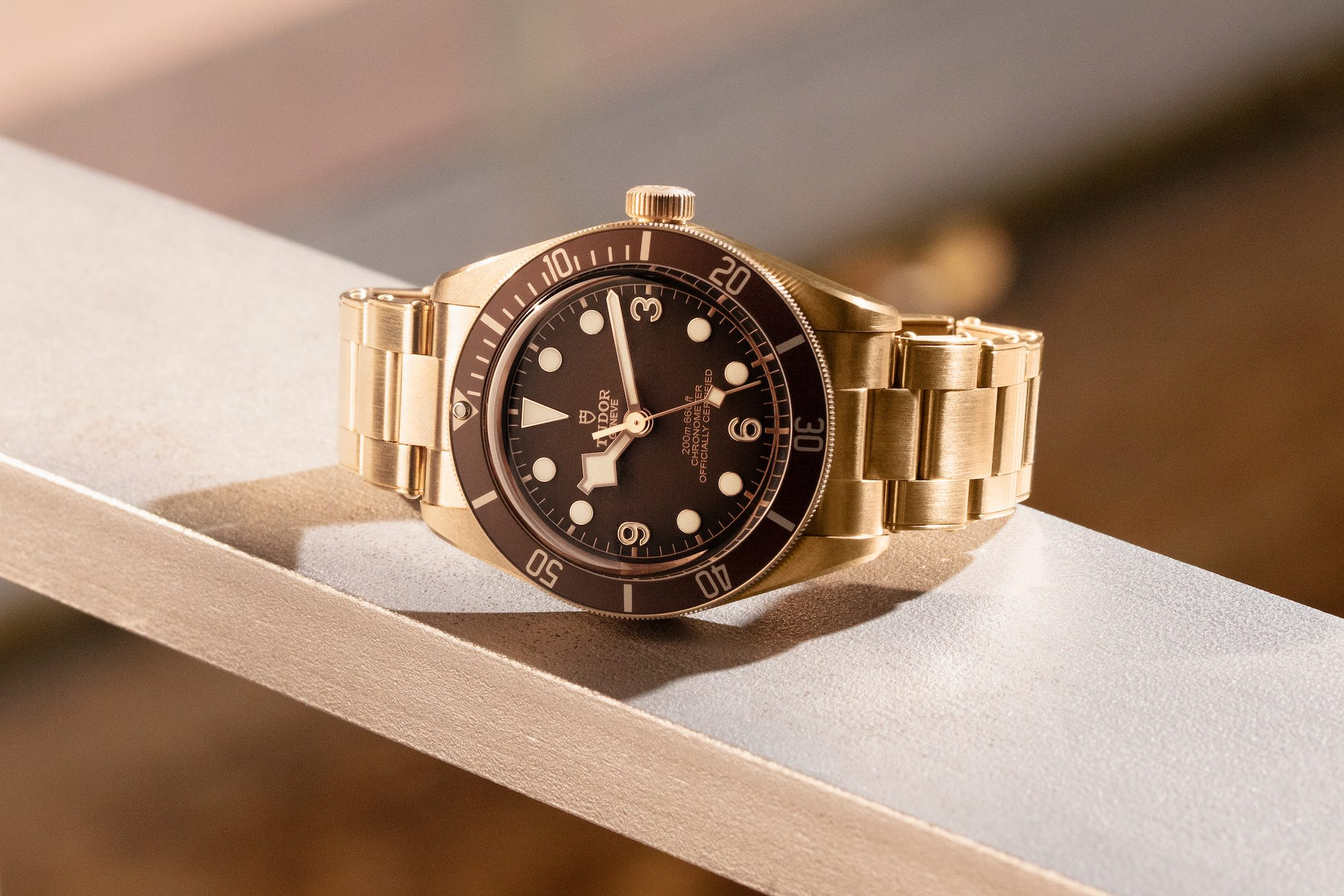 Introducing - Tudor Black Bay Fifty-Eight Bronze M79012M Boutique