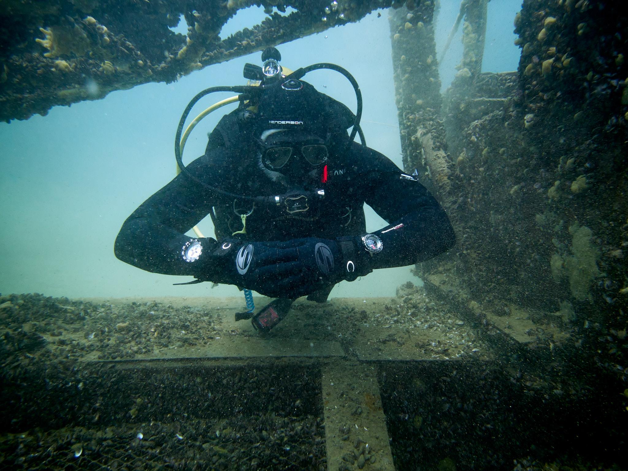 Citizen Promaster Mechanical Diver 200m NB6004 review